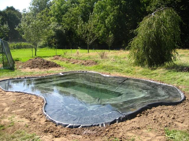 bache bassin naturel. Black Bedroom Furniture Sets. Home Design Ideas