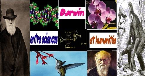 darwin10.jpg
