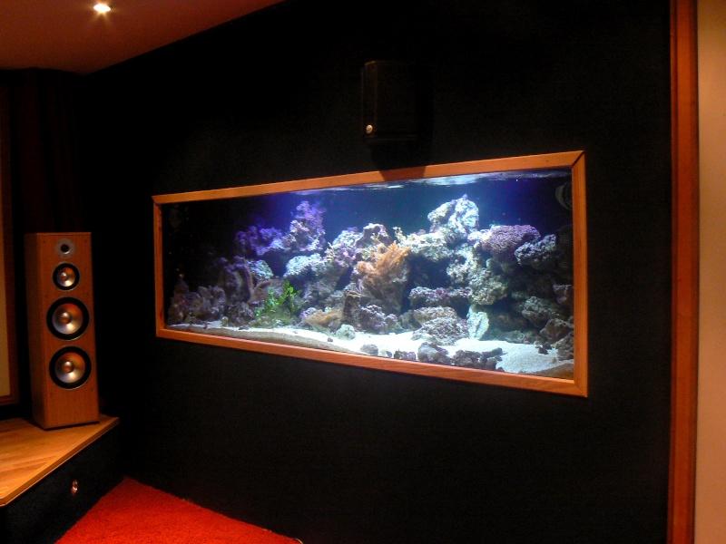 Voici notre bac recifal fo de 350 litre suivit des deux d for Aquarium 350 litres