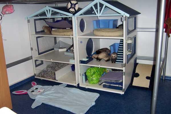 cage furet fait maison ventana blog. Black Bedroom Furniture Sets. Home Design Ideas