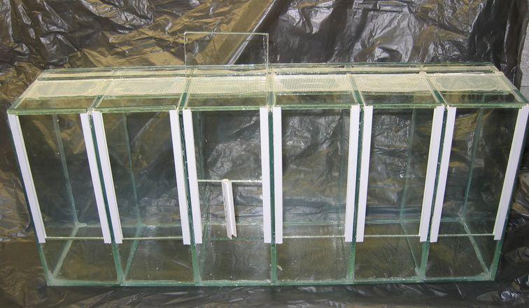 Coupe et collage du verre - Petit terrarium ...