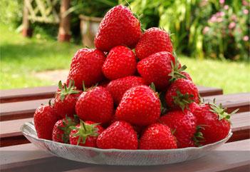 Ramene ta fraise - Ramene ta fraise ...