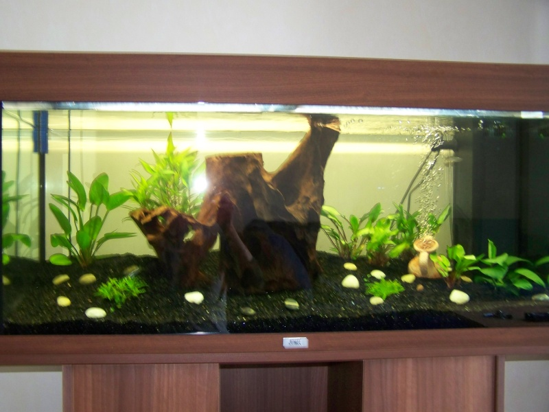 Juwel rio 180 for Jardiland aquarium