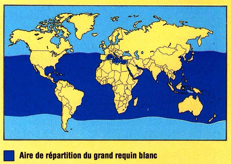 Carte de pr sence de requin blanc dans le monde for Habitat du monde