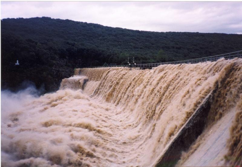 2002-010.jpg