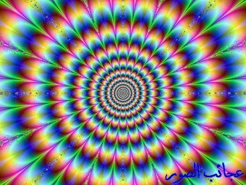 http://i85.servimg.com/u/f85/13/95/60/71/w6w_w610.jpg