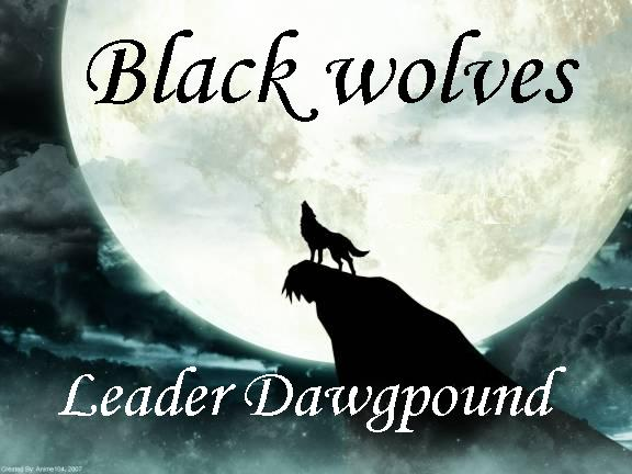 Blackwolves