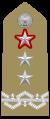 Generale di divisione con funzioni di generale di corpo d'armata