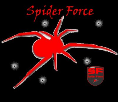 Spider Force airsoft team
